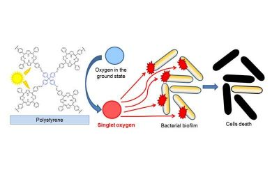Designing Porphyrinic COFs for the Photodynamic Inactivation of Bacteria