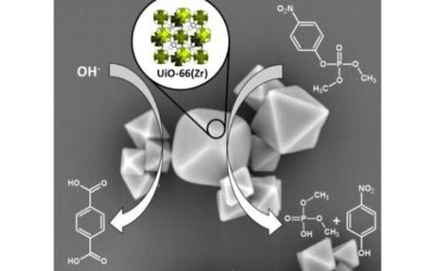 UiO-66 – stability in aqueous environment and its relevance for organophosphate degradations
