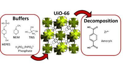 Metal–organic frameworks vs. buffers: case study of UiO-66 stability